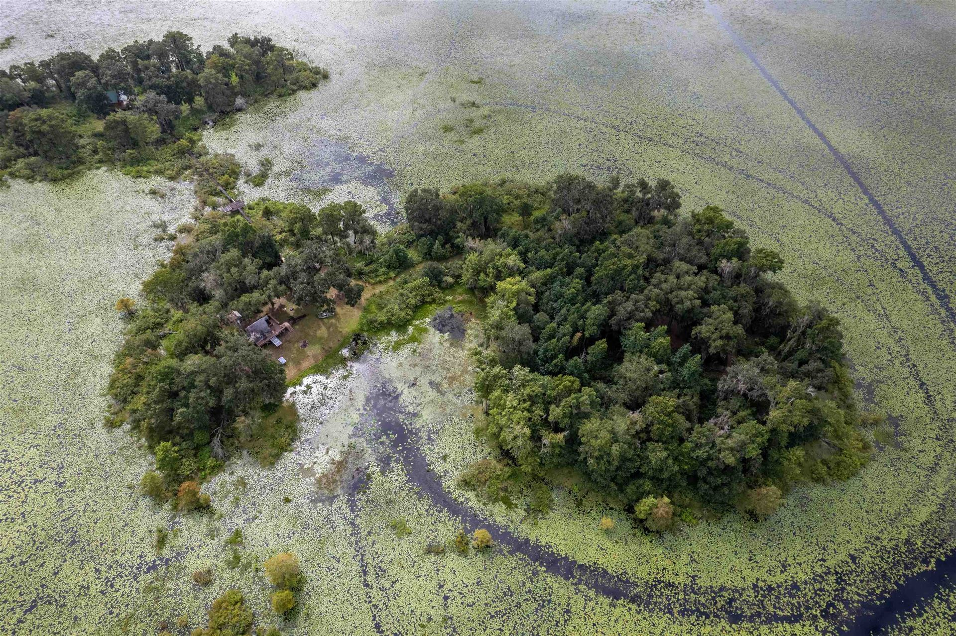 Photo of 0 Lake Iamonia Islands, TALLAHASSEE, FL 32312 (MLS # 337319)