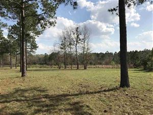 Photo of 0 Turkey Roost Road, TALLAHASSEE, FL 32317 (MLS # 303367)