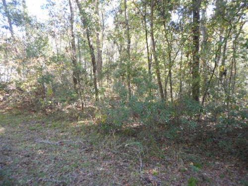 Photo of 16 Clay Revell Road #0, SOPCHOPPY, FL 32358-1803 (MLS # 275398)