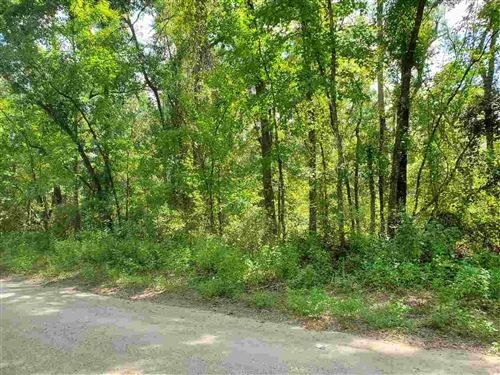 Photo of 0 Parramore Shores Road, TALLAHASSEE, FL 32310 (MLS # 336472)