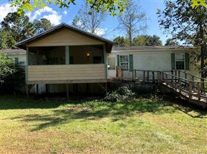 Photo of 310 Farm Boy Road, LAMONT, FL 32336 (MLS # 312473)