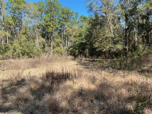 Photo of 1048 Back Forest Lane, TALLAHASSEE, FL 32305 (MLS # 315495)