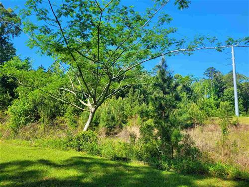 Photo of Hickory Woods Trail Lot 5, TALLAHASSEE, FL 32312 (MLS # 331522)