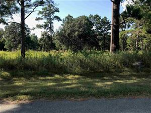 Photo of 0 Meander Court #-, TALLAHASSEE, FL 32309 (MLS # 311576)