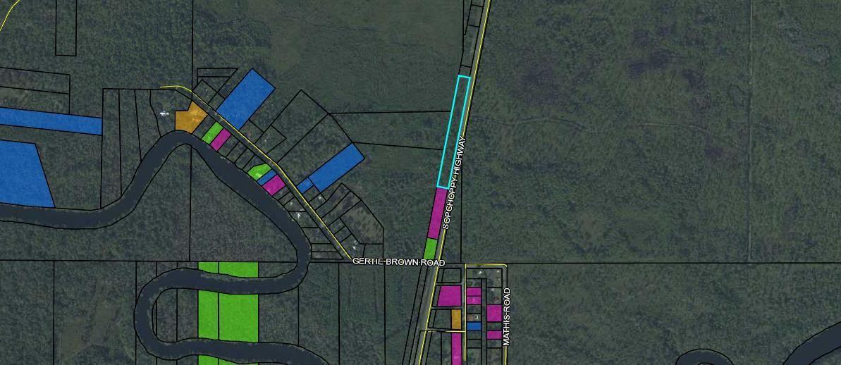 Photo of 0 SOPCHOPPY Highway #-, SOPCHOPPY, FL 32358 (MLS # 301585)