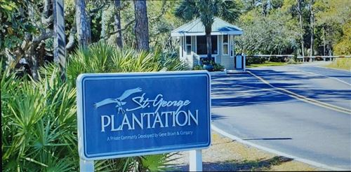 Photo of 1448 Elm Street, ST GEORGE ISLAN, FL 32328 (MLS # 329586)