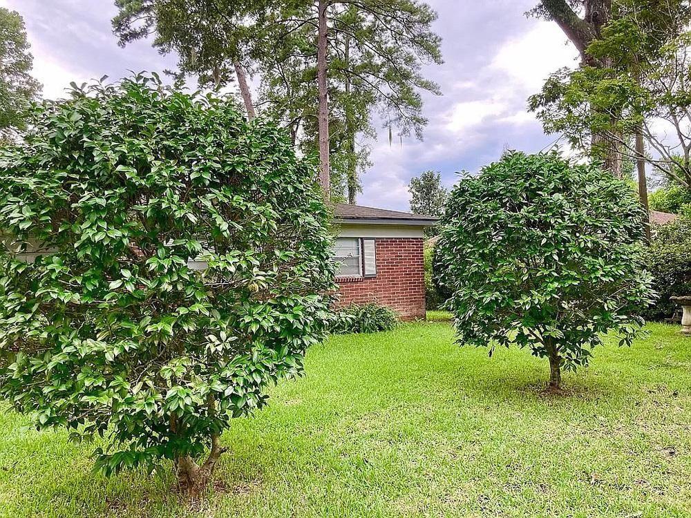 Photo of 2913 Joyce Drive, TALLAHASSEE, FL 32303 (MLS # 337608)