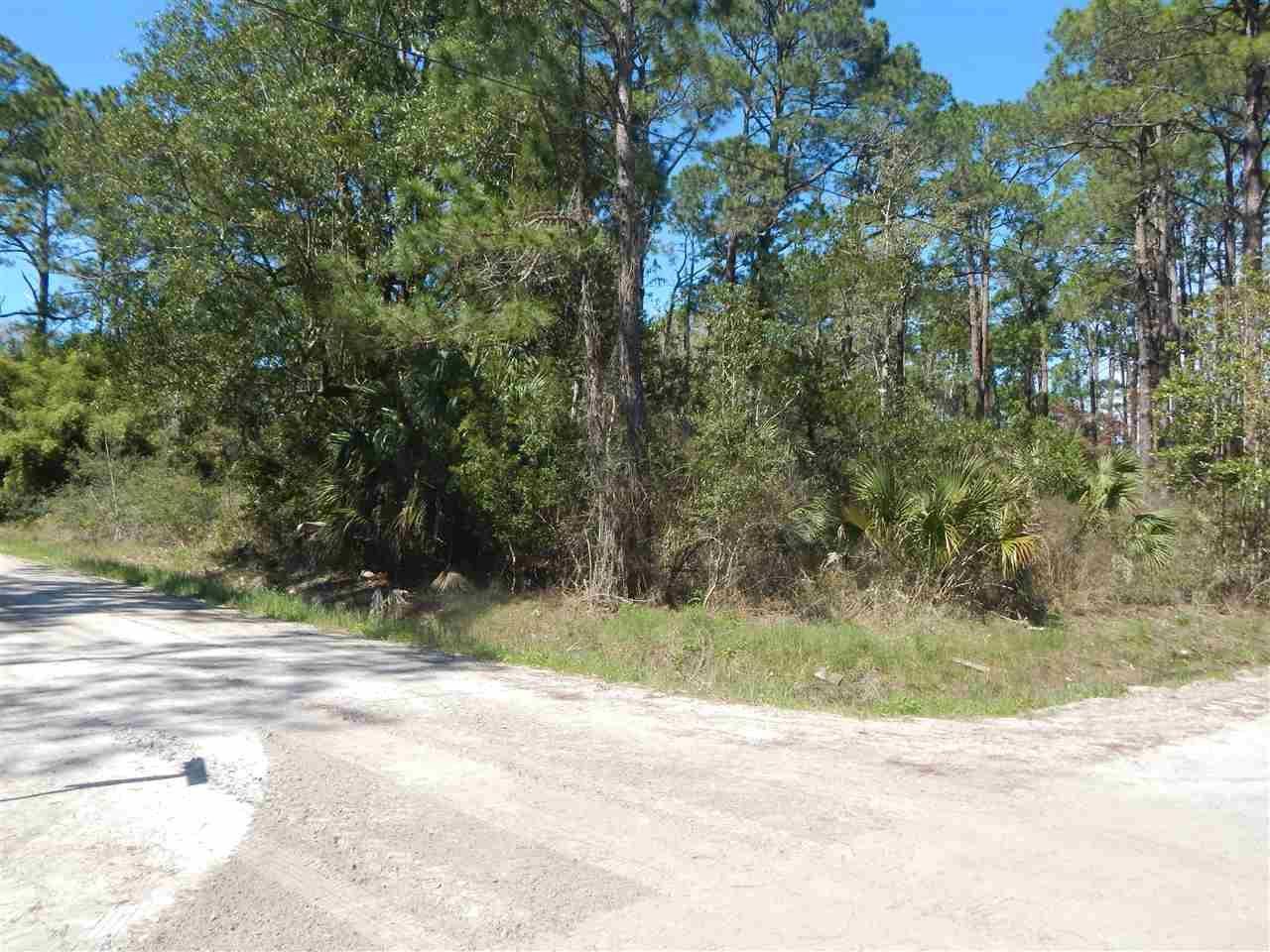 Photo of 0 Mississippi Avenue, PANACEA, FL 32346 (MLS # 316643)