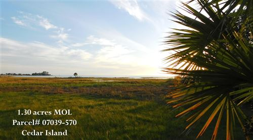 Photo of 000 Cedar island Road, PERRY, FL 32348 (MLS # 338652)