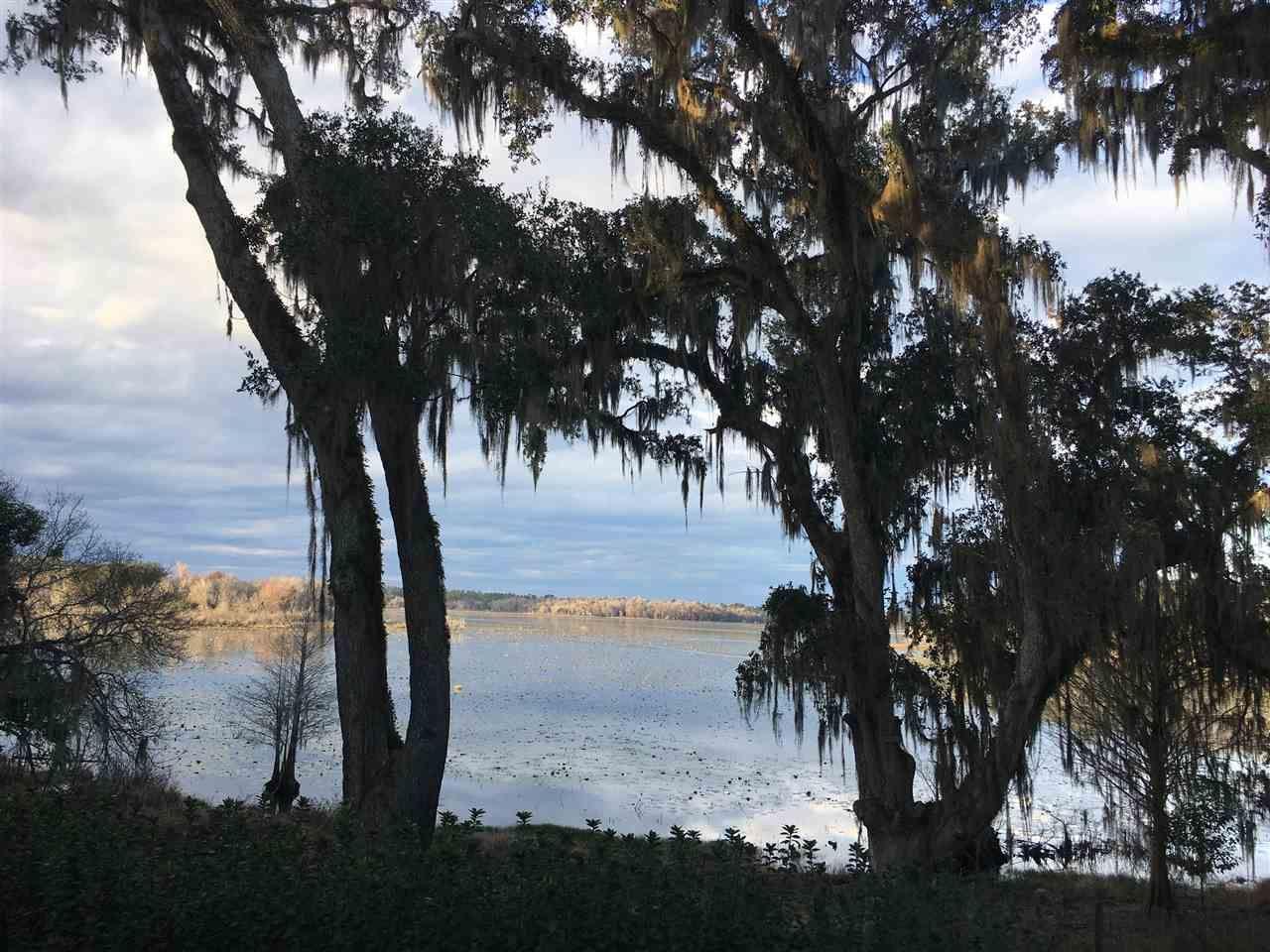 Photo of 10671 Lake Iamonia Drive, TALLAHASSEE, FL 32312 (MLS # 322656)