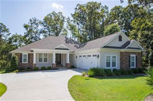 Photo of 9244 SHOAL CREEK Drive, TALLAHASSEE, FL 32312 (MLS # 311661)