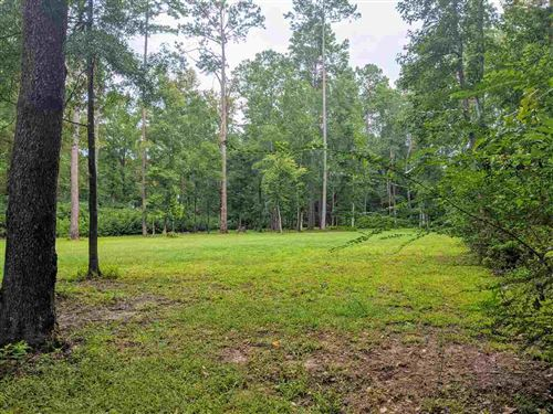 Photo of 00 Tan Mouse Road, TALLAHASSEE, FL 32309 (MLS # 321761)