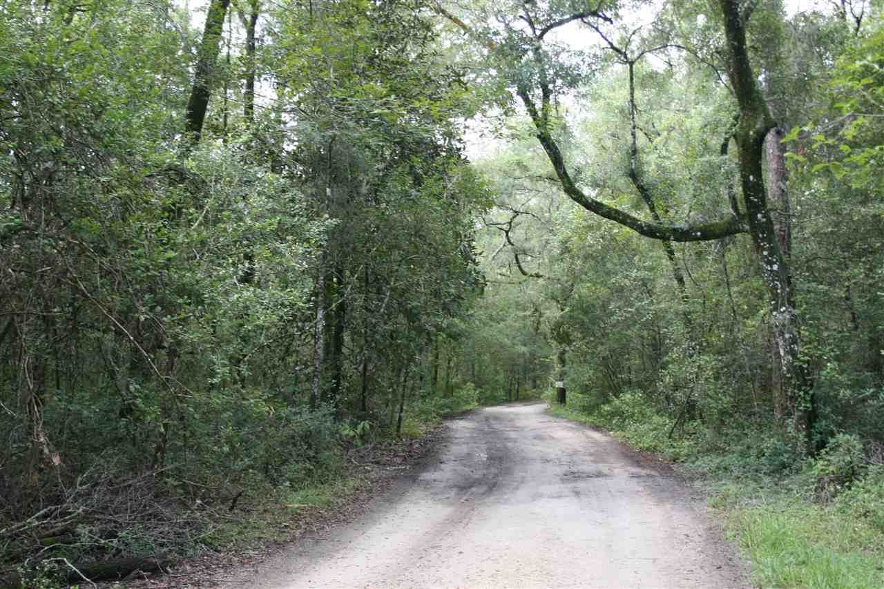 Photo of XXX TUCKER SPRINGS Road #-, SOPCHOPPY, FL 32358 (MLS # 311779)
