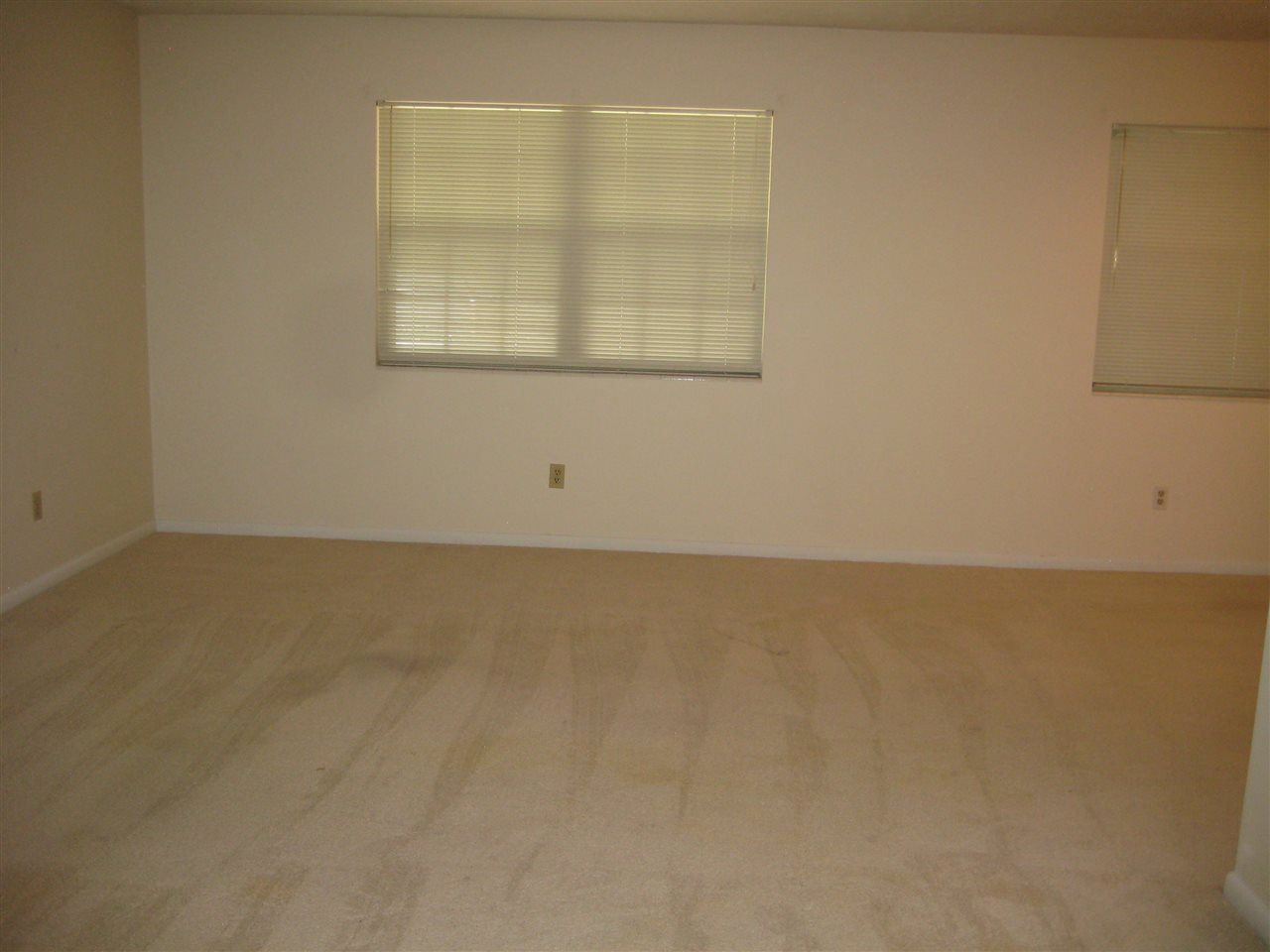 Photo of 3838 Leane Drive, TALLAHASSEE, FL 32309 (MLS # 322803)