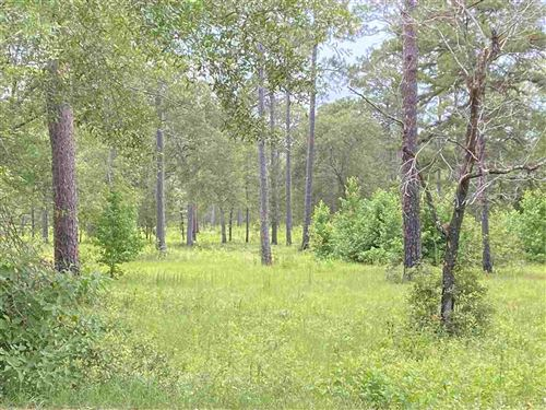Photo of Lot 111 LEIGH READ ROAD, TALLAHASSEE, FL 32309 (MLS # 336821)