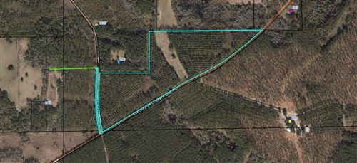 Photo of SW Taylor County Line Rd, GREENVILLE, FL 32331 (MLS # 315836)