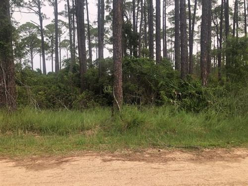 Photo of 95 Lakeview Drive, BALD POINT, FL 32346 (MLS # 320879)