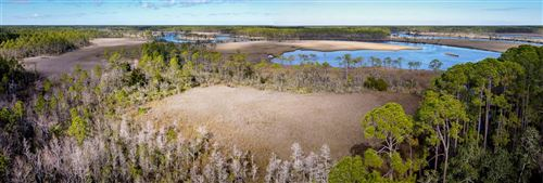 Photo of X Mill Road, CARRABELLE, FL 32322 (MLS # 326879)