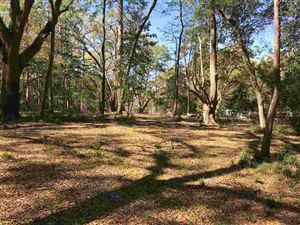 Tiny photo for 0 Buck Point, TALLAHASSEE, FL 32312 (MLS # 290880)