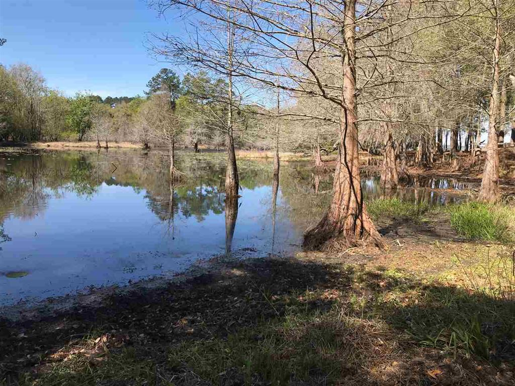Photo for 0 Buck Point, TALLAHASSEE, FL 32312 (MLS # 290880)