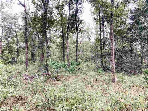 Photo of Vacant SE Boundary Bend Trail, MADISON, FL 32340 (MLS # 323885)