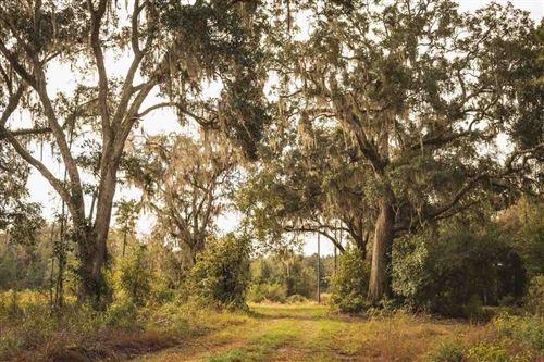 Photo of NW Honey lake Road, GREENVILLE, FL 32331 (MLS # 327887)