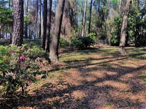 Tiny photo for 3204 FAWN HILL Trail, TALLAHASSEE, FL 32312 (MLS # 298893)