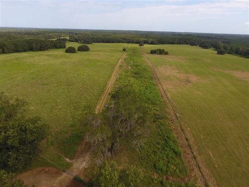 Photo of 6024 NW Little Cat Road #00, MADISON, FL 32340 (MLS # 310899)