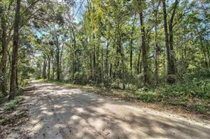 Photo of 1120 Sandy Acres Trail, TALLAHASSEE, FL 32317 (MLS # 312908)