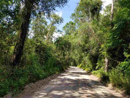 Photo of 650 Whiddon Lake Road, CRAWFORDVILLE, FL 32327 (MLS # 320914)
