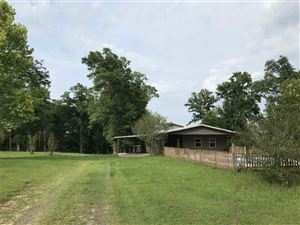 Photo of 1090 Frank Smith Rd, QUINCY, FL 32351 (MLS # 308964)