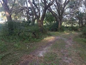 Photo of 0 Andrew Reams Road, PERRY, FL 32347 (MLS # 302976)