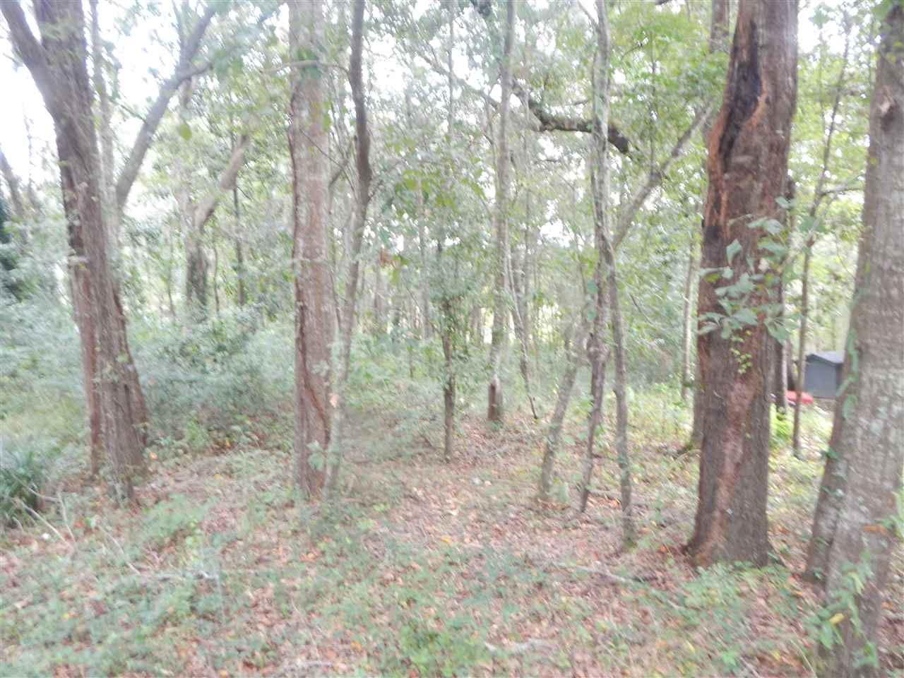 Photo of 0 OUTLOOK Court #-, TALLAHASSEE, FL 32303 (MLS # 337985)