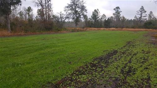 Photo of 3392 SW Bee Tree Road, MADISON, FL 32340 (MLS # 323990)