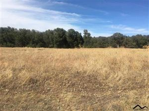 Photo of Lot C9 Dar Lane, Red Bluff, CA 96080 (MLS # 20191115)