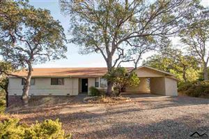 Photo of 22360 Lariat Lane, Red Bluff, CA 96080 (MLS # 20191298)