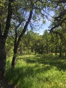 Tiny photo for 0 Old Mission Drive, Red Bluff, CA 96080 (MLS # 20170405)