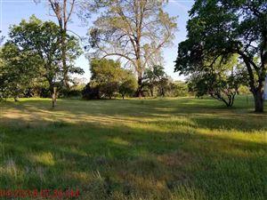 Photo of 17060 Elder Creek Circle, Corning, CA 96021 (MLS # 20180450)
