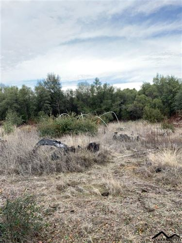 Photo of Lanes Valley Road, Paynes Creek, CA 96075 (MLS # 20191474)