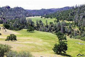 Tiny photo for Red Bluff, CA 96080 (MLS # 20190635)