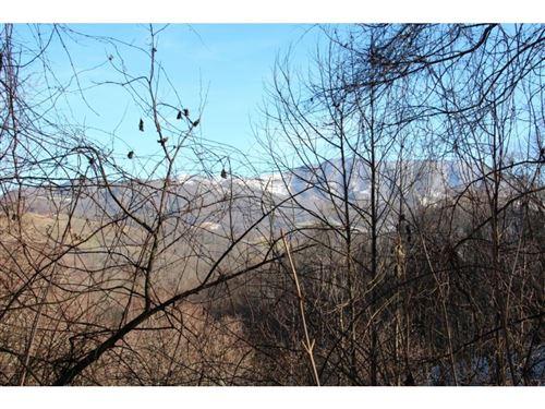 Tiny photo for 000 FERN HILL Drive, Trade, TN 37691 (MLS # 416009)