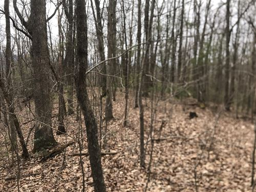 Photo of Tbd Hiddenwood Drive, Mountain City, TN 37683 (MLS # 9919014)