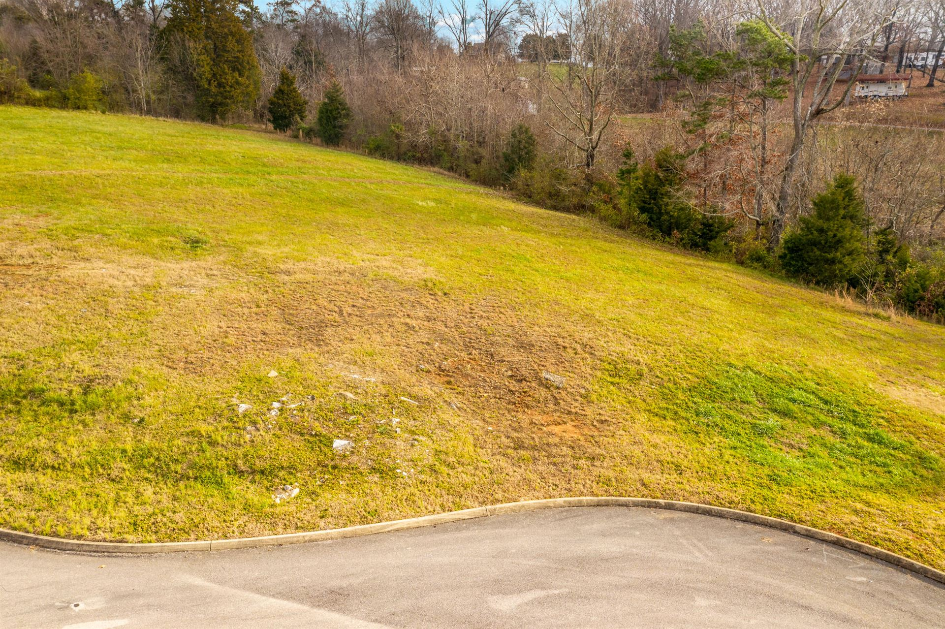 Photo of Lot 120 Cow Poke Lane, Rutledge, TN 37861 (MLS # 9922024)