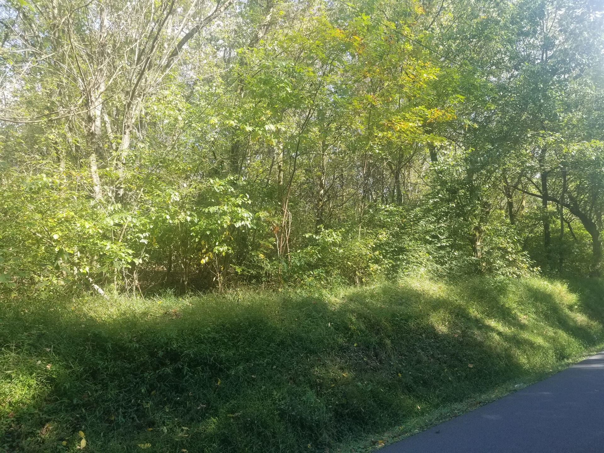 Photo of Tbd Seneker Lane, Blountville, TN 37617 (MLS # 9930025)