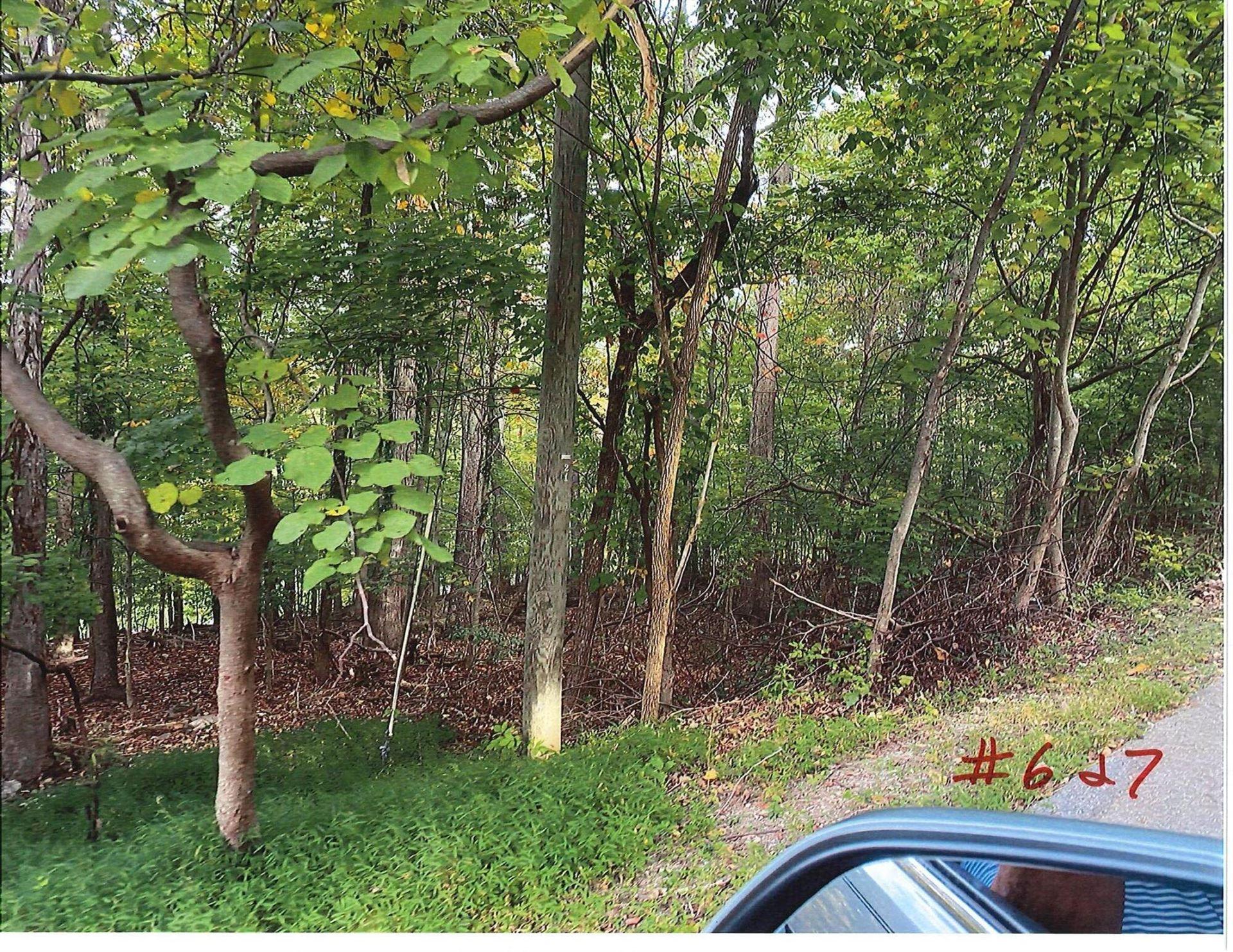 Photo of Lot 16 Grove Park Drive, Bristol, TN 37621 (MLS # 9930029)