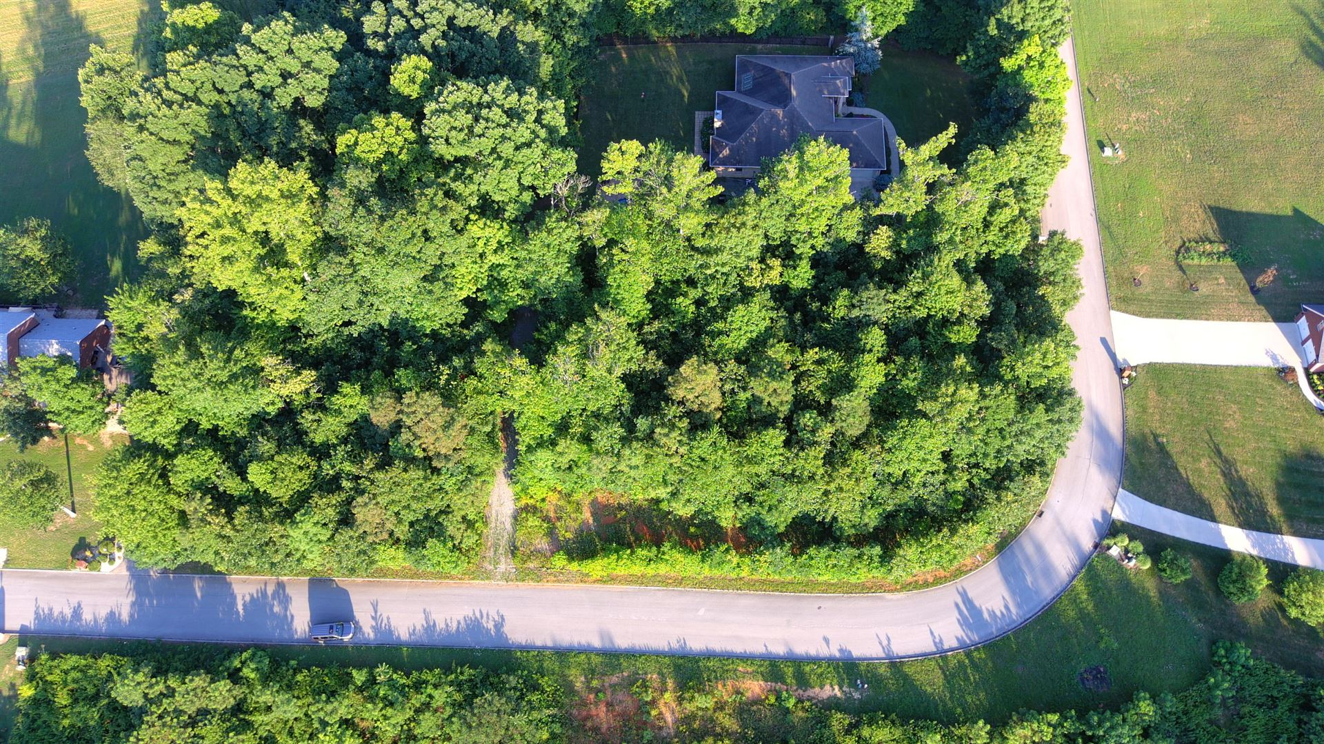 Photo of 121 Rosecliff Drive, Fall Branch, TN 37656 (MLS # 9911075)