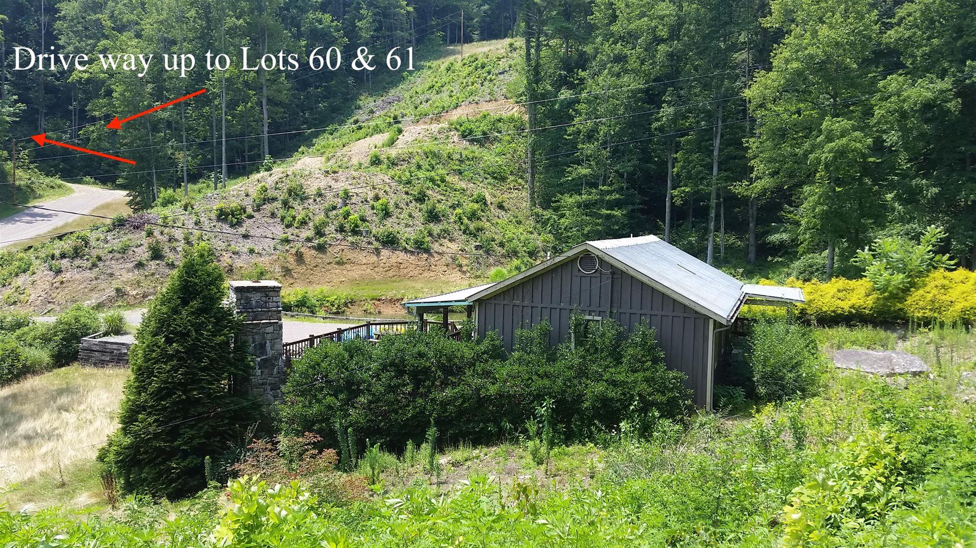 Photo of 305 Honeymoon Hollow, Butler, TN 37640 (MLS # 9929084)