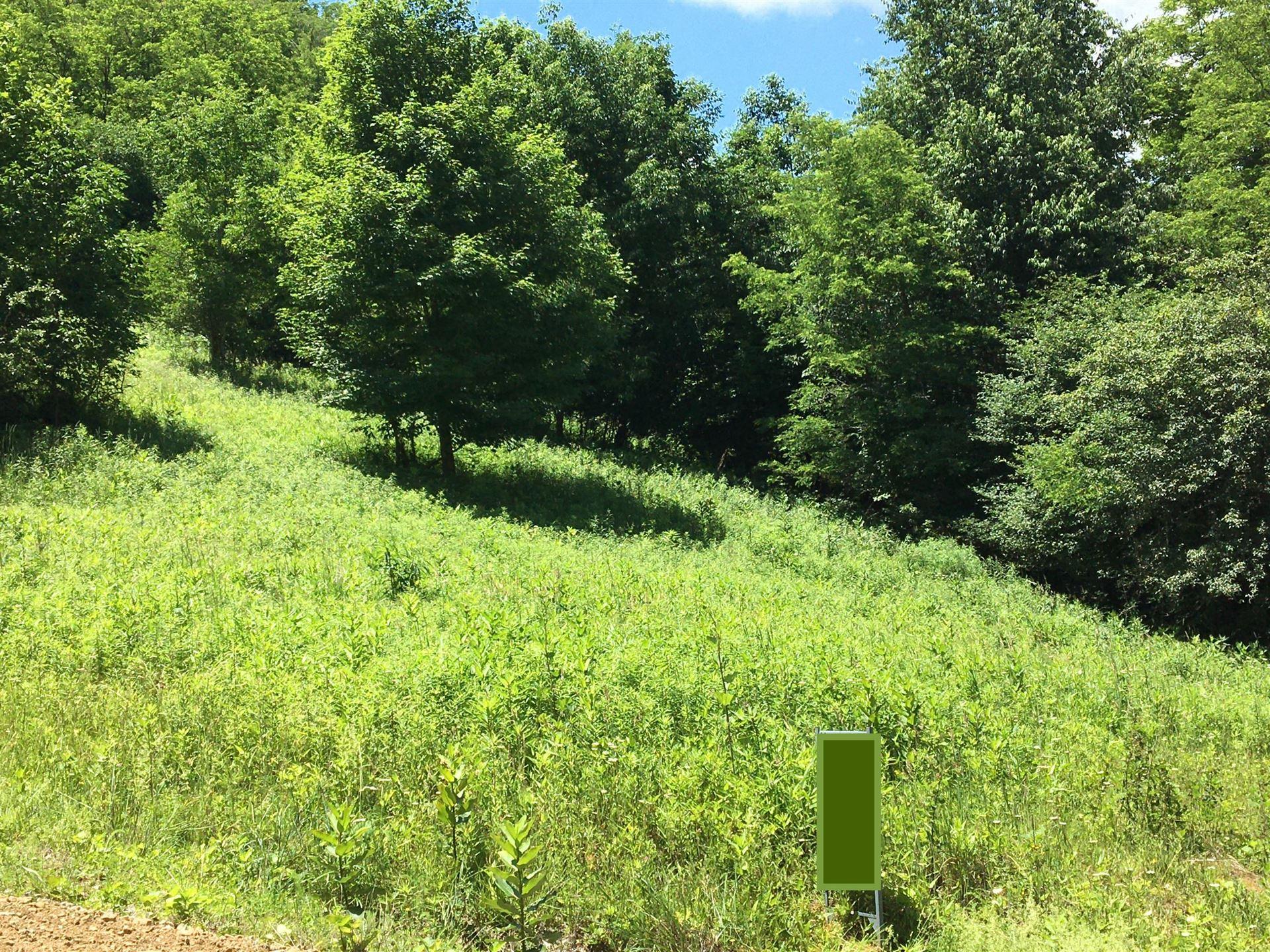 Photo of Tbd Shell Creek Road, Roan Mountain, TN 37687 (MLS # 9919086)