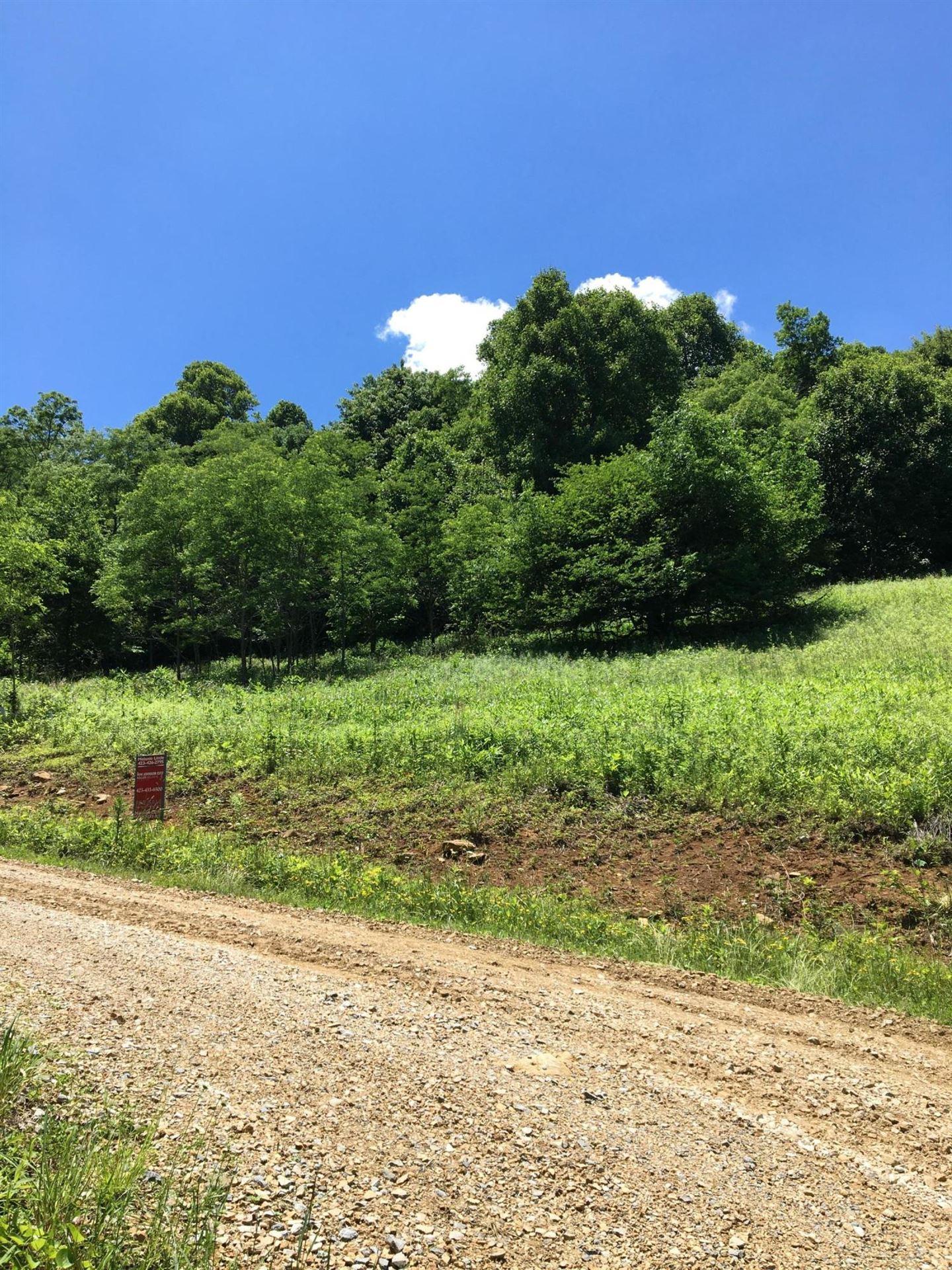 Photo of Tbd Shell Creek Lot 24 Road, Roan Mountain, TN 37687 (MLS # 9919087)