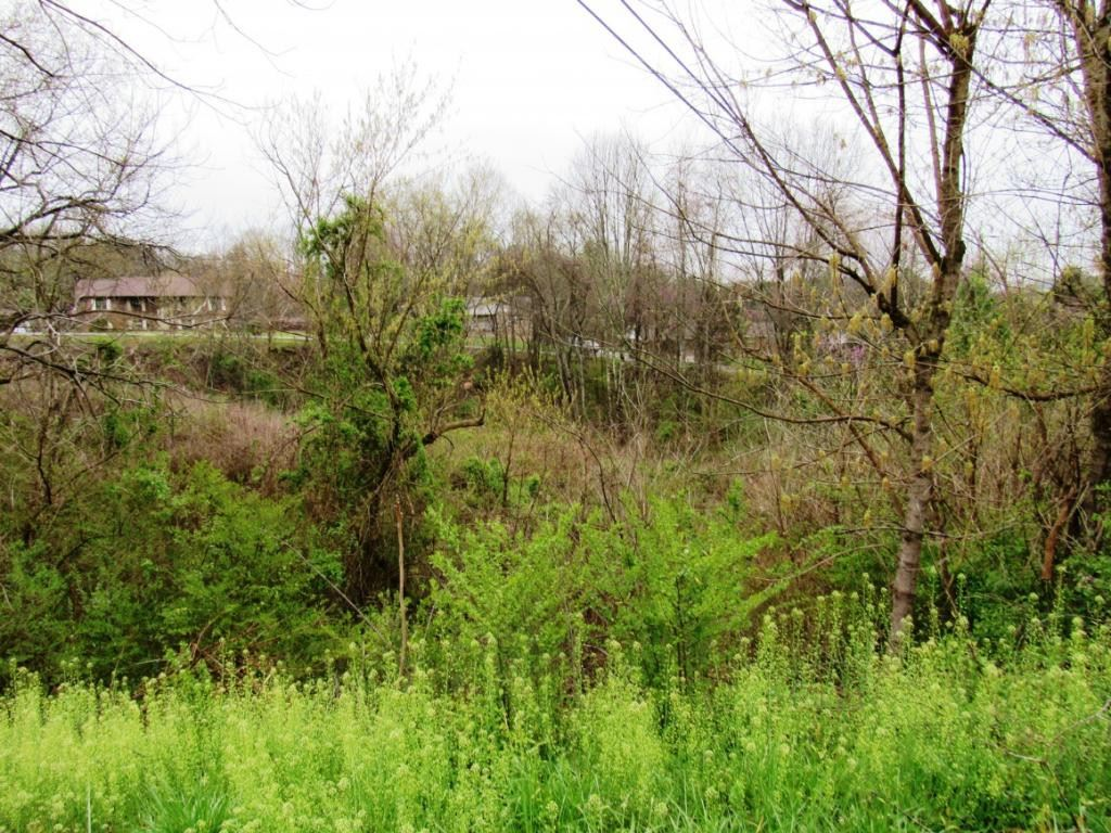 Photo of Tbd Whispering Hills Dr/Sedgefield, Kingsport, TN 37660 (MLS # 9924089)